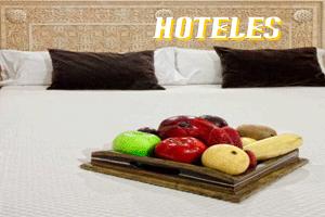 66 Hoteles