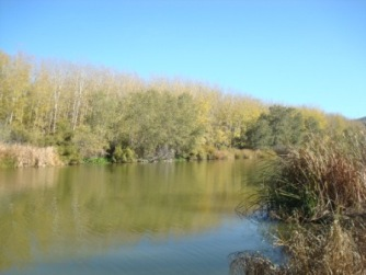 Ribera del río Tajo