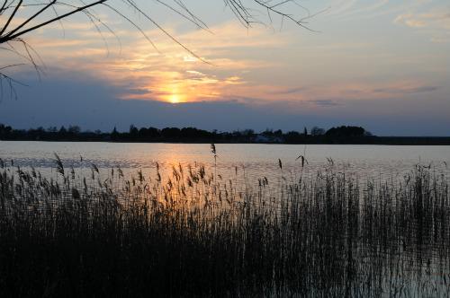 Imagen 12943 perteneciente a Reservas Naturales