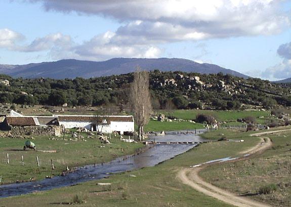 Molino de Villapalos