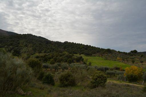 Entorno natural 3