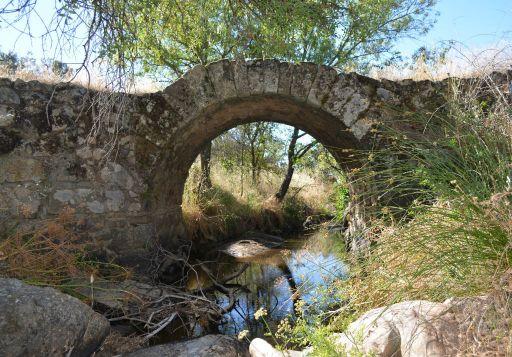 Puente romano (1)