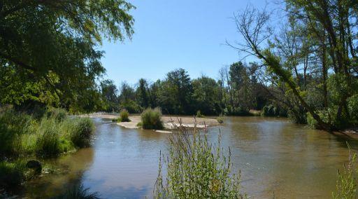 Río Alberche, playas