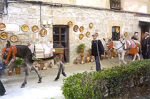 Ruta Arriera Montes de Toledo (a)