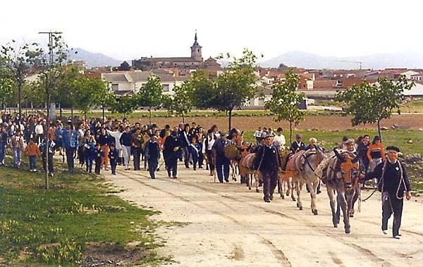 Ruta Arriera Montes de Toledo (b)