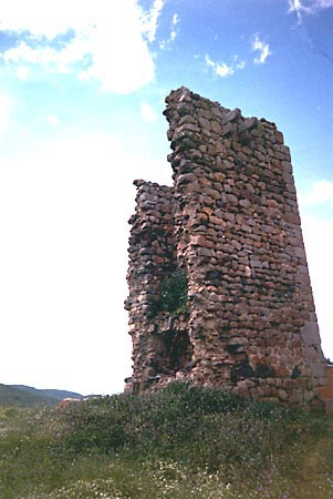 Malamoneda, Torre