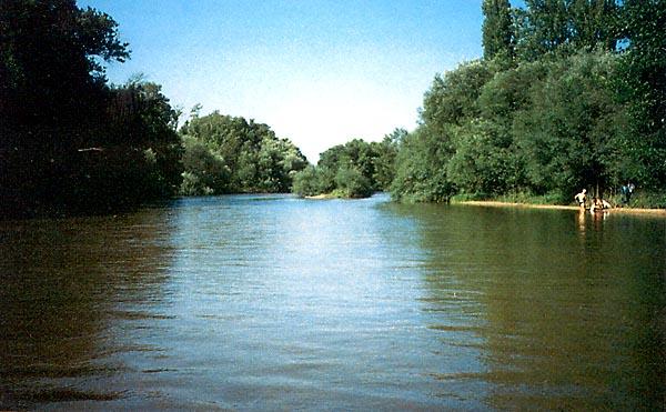 Río Alberche (b)