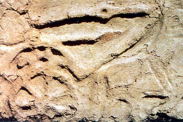 El Cerrón, restos arqueológicos (c)