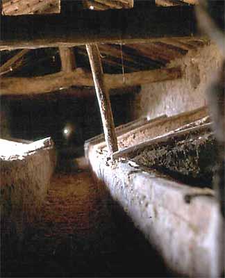 Lagar de Don Ramón Moreno, interior