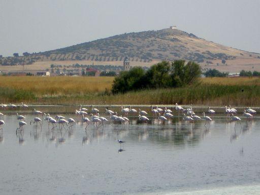 Laguna El Hongar