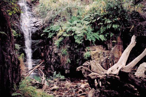 Parajes naturales (6)