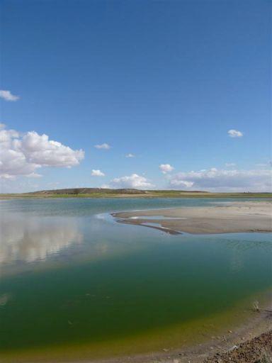 Laguna (3)