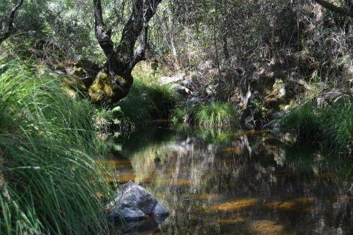 Piedraescrita, arroyo