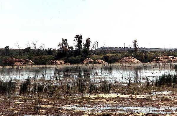 Lago Chico (b)