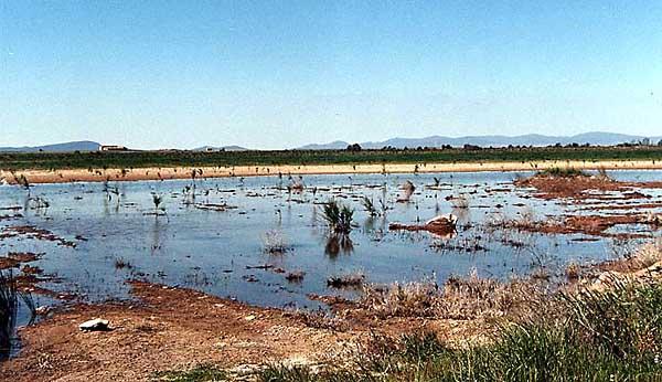 Lago de la Sal (b)