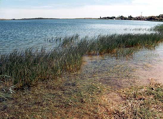 Laguna Grande (c)