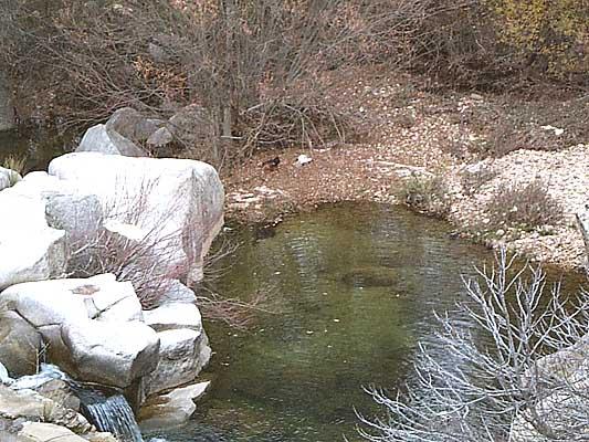 Río Cedena (a)