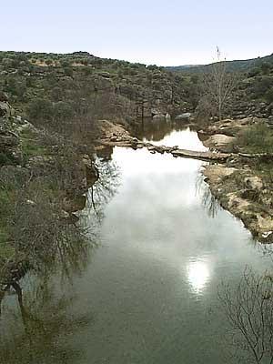 Río Cedena (c)