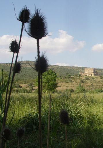 Castillo de Guadalerzas, vista