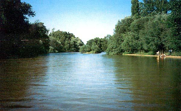 Río Alberche a su paso por Hormigos