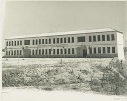 Cebolla. Escuelas. Hacia 1960 (P-2578)