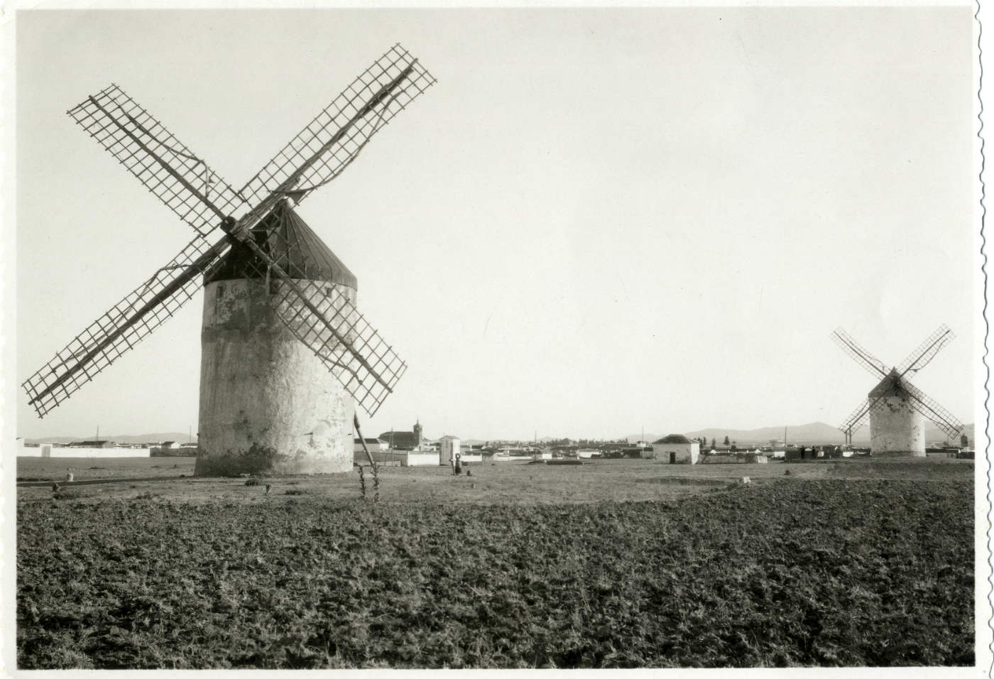 Madridejos. Molinos de viento. (P-2655)