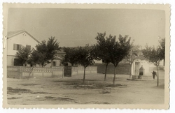 Villamiel de Toledo. Casa del médico. 1960 (P-1474)