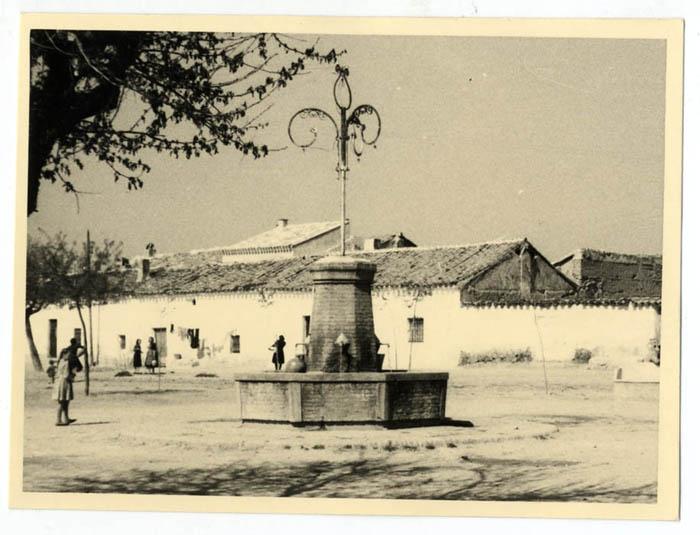 Yeles. Fuente pública. 1960 (P-1554)