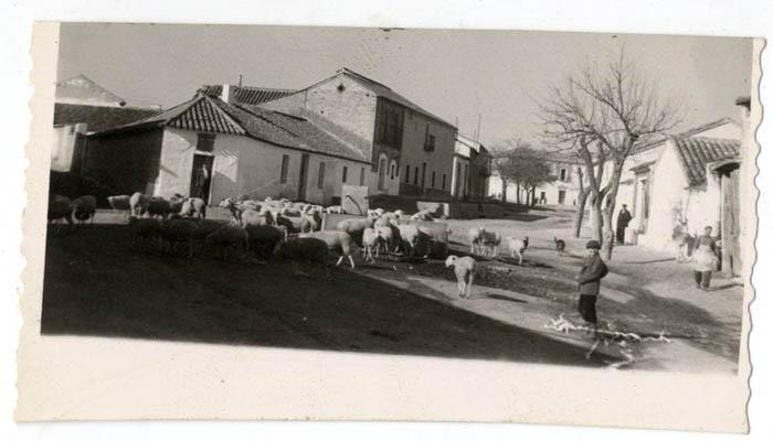 Burujón. Fuente y abrevadero. 1958 (P-50)