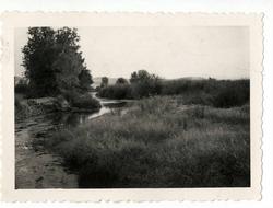 Belvís de la Jara. El río Gévalo por la dehesa. 1958 (P-37)