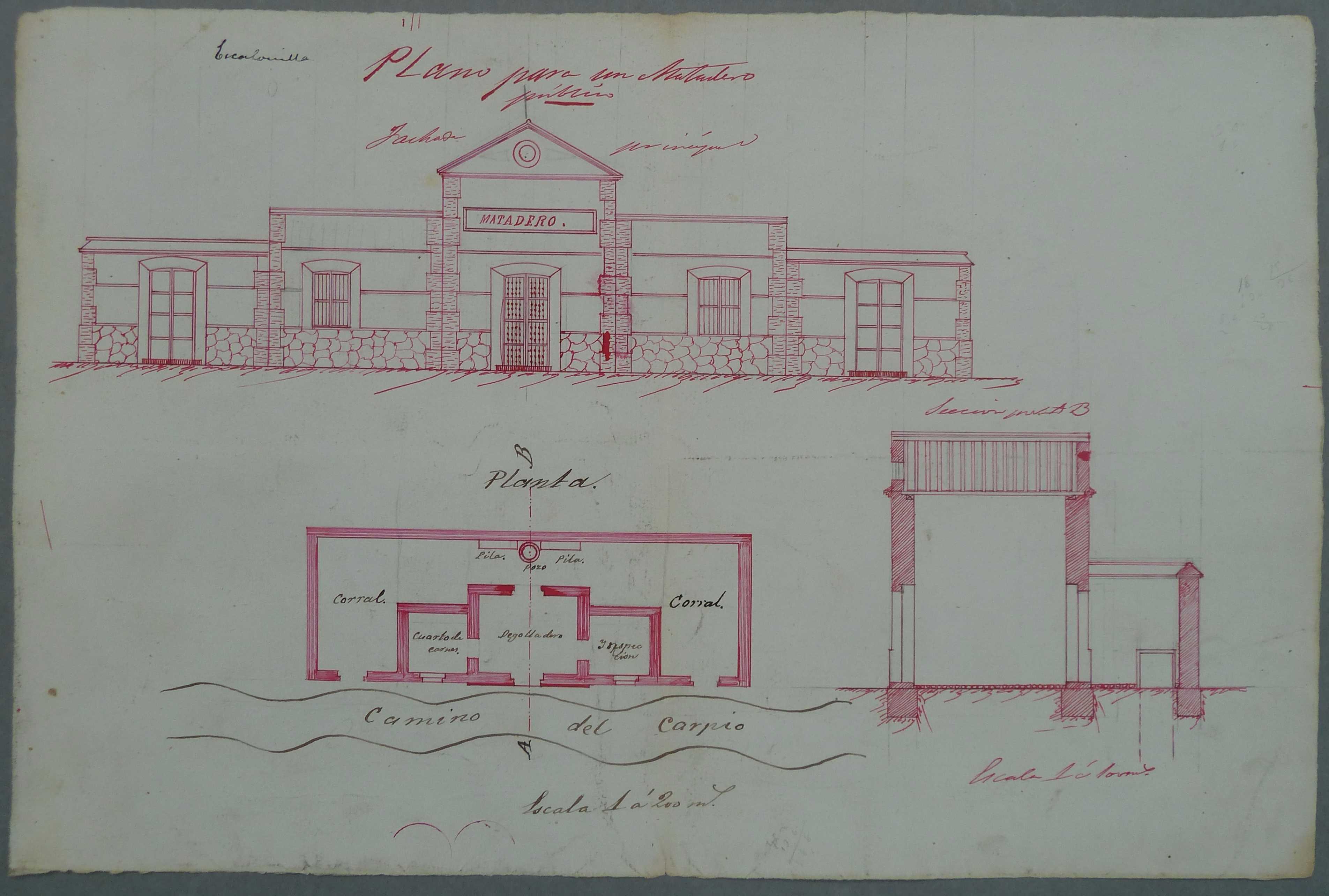Escalonilla. Plano edificio matadero público, 1884