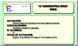 AGROINDUSTRIAL BOROX (BOROX)