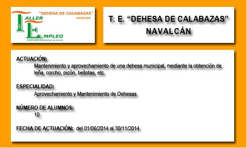 DEHESA DE CALABAZAS (NAVALCÁN)