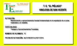 EL PIÉLAGO (HINOJOSA DE SAN VICENTE)