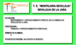 MONTEJARA-SEVILLEJA (SEVILLEJA DE LA JARA)