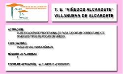VIÑEDOS DE ALCARDETE (VILLANUEVA DE ALCARDETE)