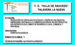 VILLA DE SAUCEDO (TALAVERA LA NUEVA)