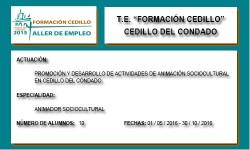 FORMACIÓN CEDILLO (CEDILLO DEL CONDADO)