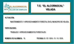 EL ALCORNOCAL (VELADA)