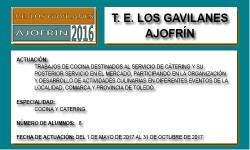 LOS GAVILANES (AJOFRIN)