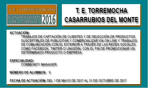 TORREMOCHA (CASARRUBIOS DEL MONTE)