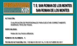 SAN ROMÁN DE LOS MONTES (SAN ROMÁN DE LOS MONTES)