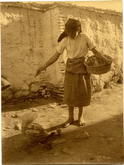 t.-Mujer alimentando gallinas
