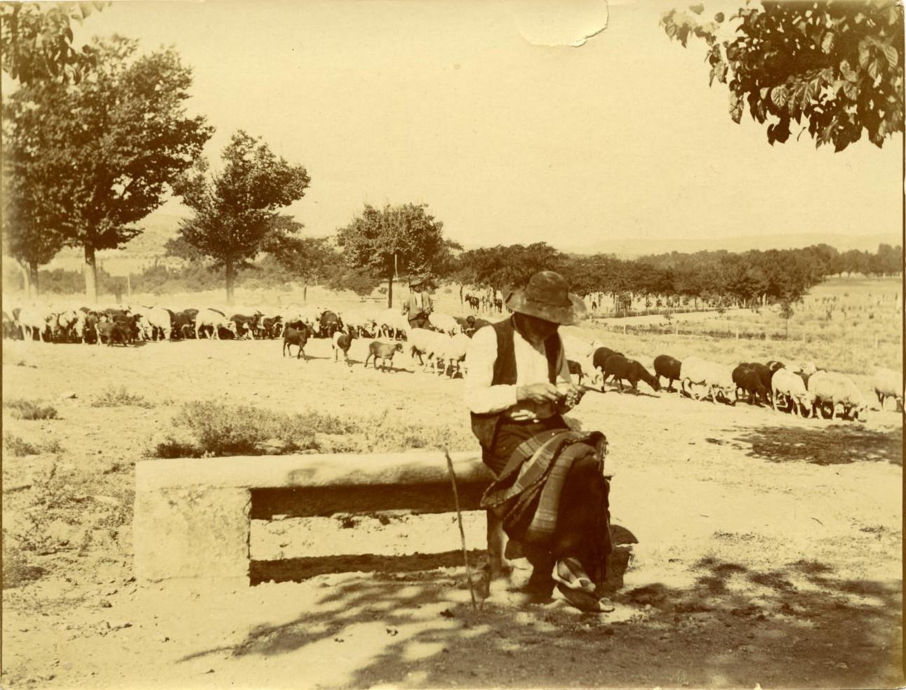 x.-Pastor sentado en un banco