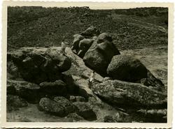 t.-Los hijos del pintor en el cerro de los Palos