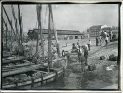 t.-Barcos y marineros en un Puerto Pesquero