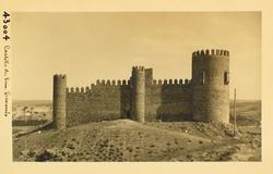 43004-Castillo de San Servando visto desde el sur