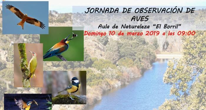 Cartel anunciador de jornada de observación de aves en El Borril