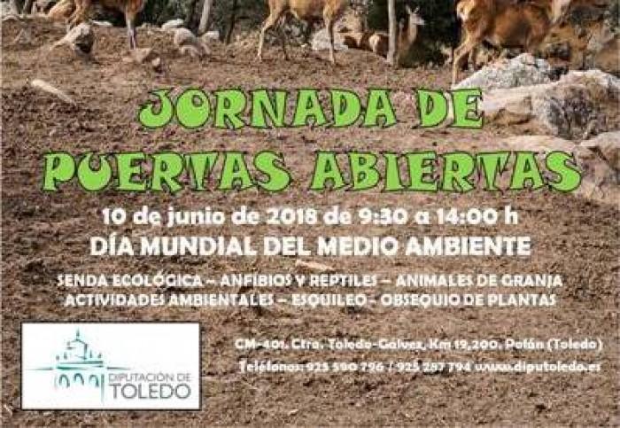 Cartel divulgativo Jornada puertas abiertas en El Borril