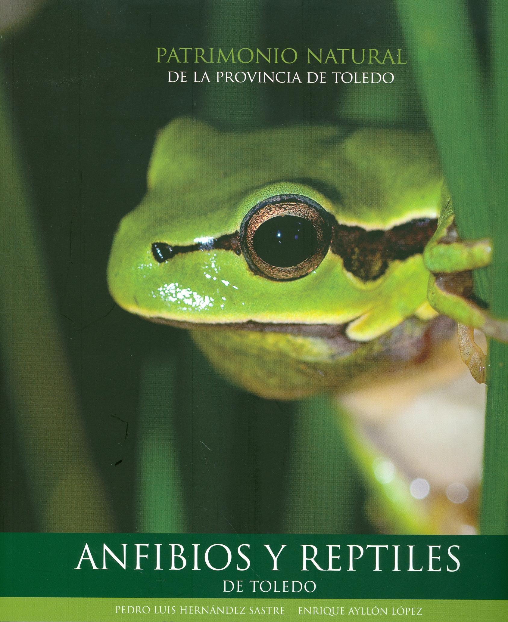 Anfibios y reptiles de Toledo